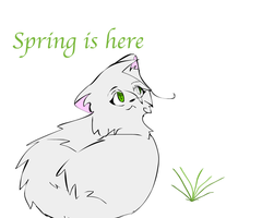 Spring is here-Request by frostedForest