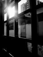 The morning sun by SCKW
