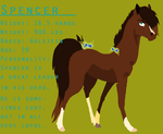 Spencer Reference Sheet. by flawless-brony