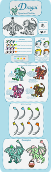 Dragai Species Guide by asdflove