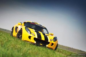 Exige - 2 by Dhante