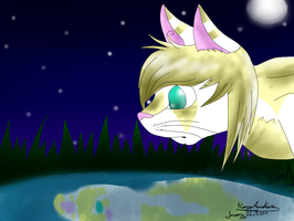 Reflection at Moonlight by Misswd