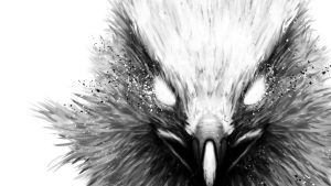 The Hawk Wallpaper 1920x1080 by FuShan