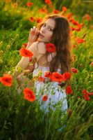 Poppy Effect 3 by platen