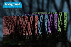Free Dark Trees Background by BackgroundStore