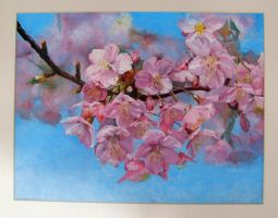 Flowering of the cherry tree by Vincik