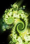Anahata by sci-clone