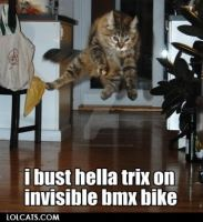 Invisible bmx by XXspiritwolf2000XX