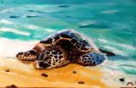Sea Turtle by Mau-Ve