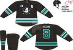 Anaheim Ducks Third NEW V1 by thepegasus1935