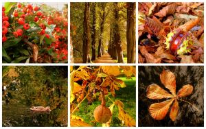 Autumn Collage by Lilleninja