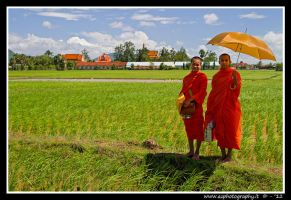 Cambodian Monks by zaffonato