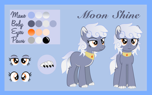 Moon Shine - Reference Sheet by DayDreamSyndrom
