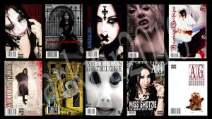 Magazine Covers 2010 by rlclarkjnr