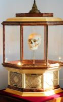 Crank Driven Observation Box with Skull by Meddling-With-Nature