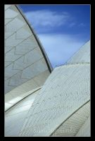 Sydney Opera house by sandyprints