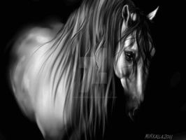 Andalusian by ThessaGreenleaf