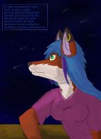 Staring into the night by Fox-Superior