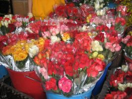 Roses for Sale 1 by EnchantedDove