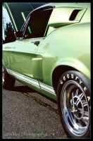 Green Meanie by NikkyxPhotography
