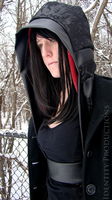 Elizabeth Damask Underbust Hood and Cowl 5 by Fennec777