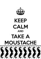 Keep Calm And Take A Moustache by iLyLh7