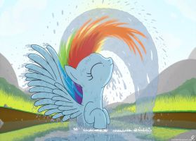 Wet Dash by BCRich40