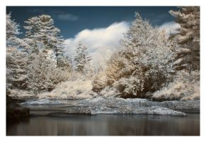 IR Dreamscape 2 by IraMustyPhotography