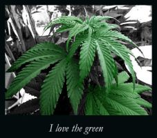 I Love The Green by psygothic