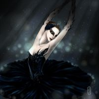 black swan by Delfi-Delfi