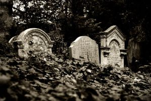 Abney Park Cemetery IV by only-melancholy