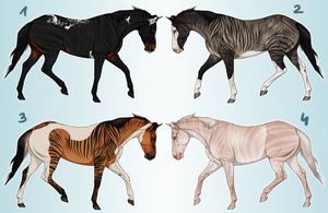Pinto Zorse Adoptables CLOSED by i3nici