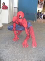 My son a spider man by Kryptoniano