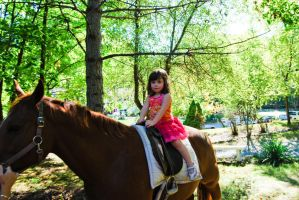 Little Girl on her Horse by TMacAG