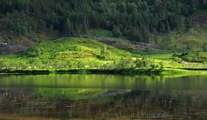 Reflections of Glenfinnan by AgiVega