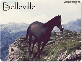 Belleville by JuneButterfly-stock