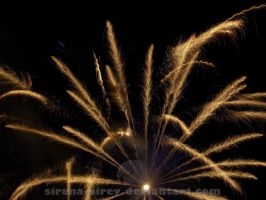 Golden Firework by sirena-pirey