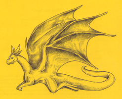 A Yellow Dragon by Ilovedragons1