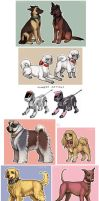 TnB dogs 2 by emlan