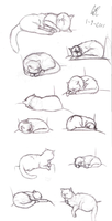 Life Studies - Sleepy Kitties by SlushiOwl