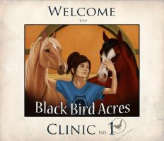 Invitation to Clinic 1 by blackseagull