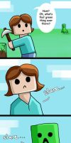 First time meeting a creeper by mythori