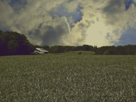 cloudy field 2 by super-chicken-stock