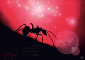 Ant Universe by gusti-boucher