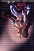 Spidey by Ironcid