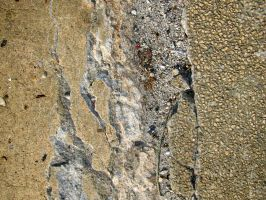 Texture - Scarred Concrete 1 by darlingstock