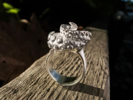 Silver Octopus Ring by DanielMoos