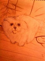 Adorable Puppy Sketch by LelouchArt