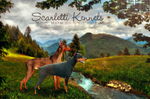 Scarletti Kennels by Vesperity