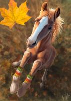 Horse in socks by IntoTheBear